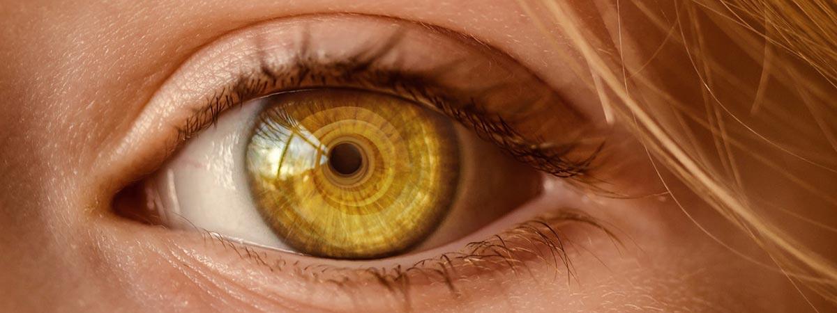 Tout savoir sur les défauts de vision - Experts en santé visuelle